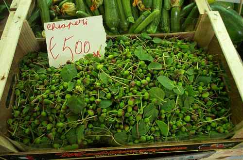 Fresh Capers